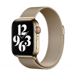 Apple Watch 40mm Band: Gold Milanese Loop
